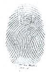 Example fingerprint for jewellery